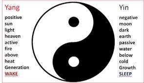 yiinyang med text symbol